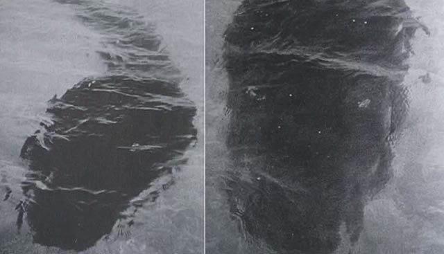 Hala Sırrı Çözülememiş 7 Esrarengiz Olay-Hook Adası Canavarı