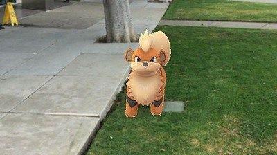 Pokemon'un Kamerada Görünmemesi Sorunu1