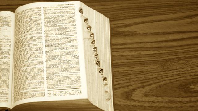 Android Cihazlar İçin En İyi 8 Sözlük Uygulaması 1