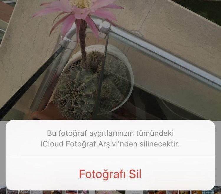 iCloud Fotoğraf Arşivi Kullanım Rehberi4