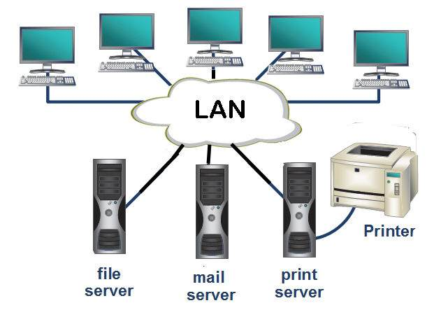 Network Nedir ?