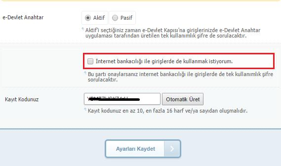e-devlet anahtar kullanımı