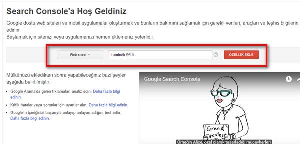 Google WM Tools