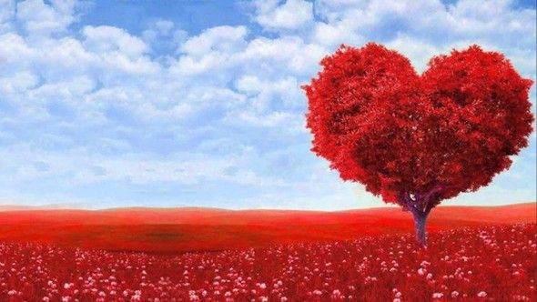 Sevgililer Günü için Alınabilecek 10 Teknolojik Hediye 1