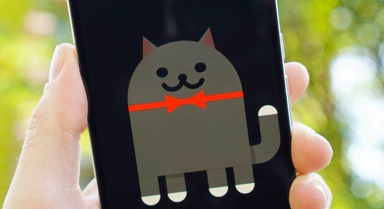 Android Nougat Kedi Oyunu Nasıl Aktif Edilir ? 1