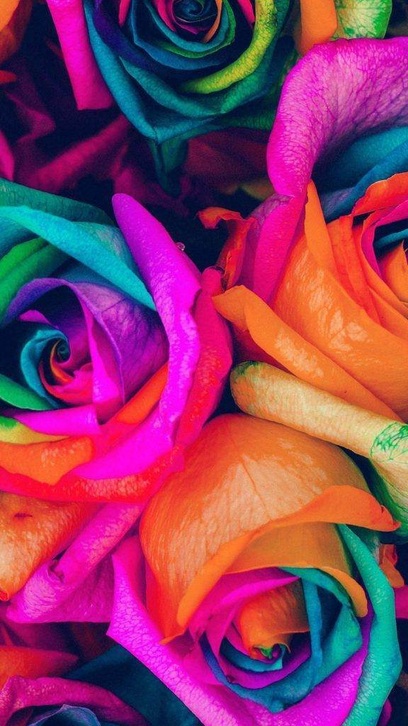 Çiçekli iPhone Duvar Kağıtları 3