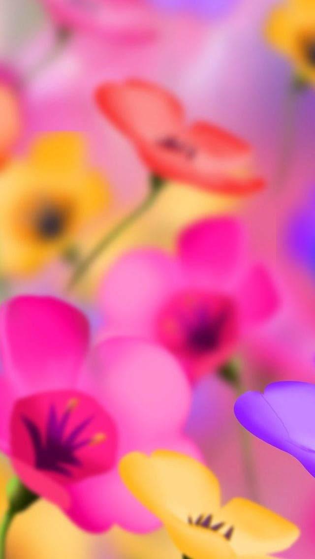 Çiçekli iPhone Duvar Kağıtları 8