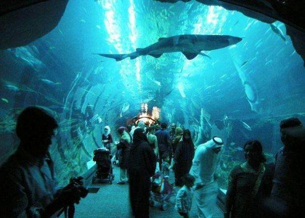 Dünyanın En Büyük 15 Akvaryumu