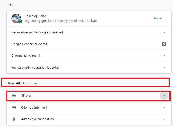 Google Chrome Kayıtlı Şifreleri Görme