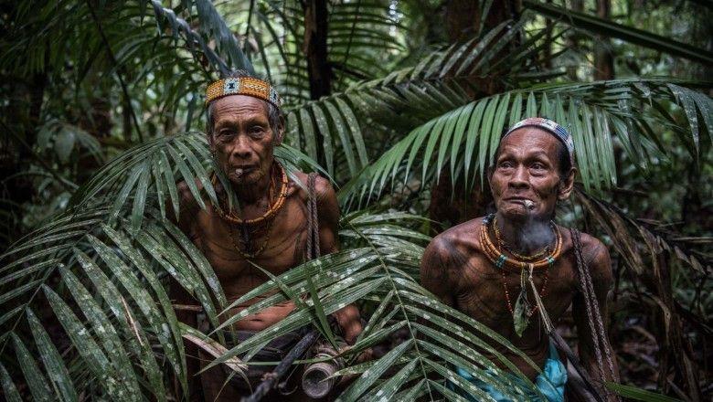 kabile filmleri, orman filmleri